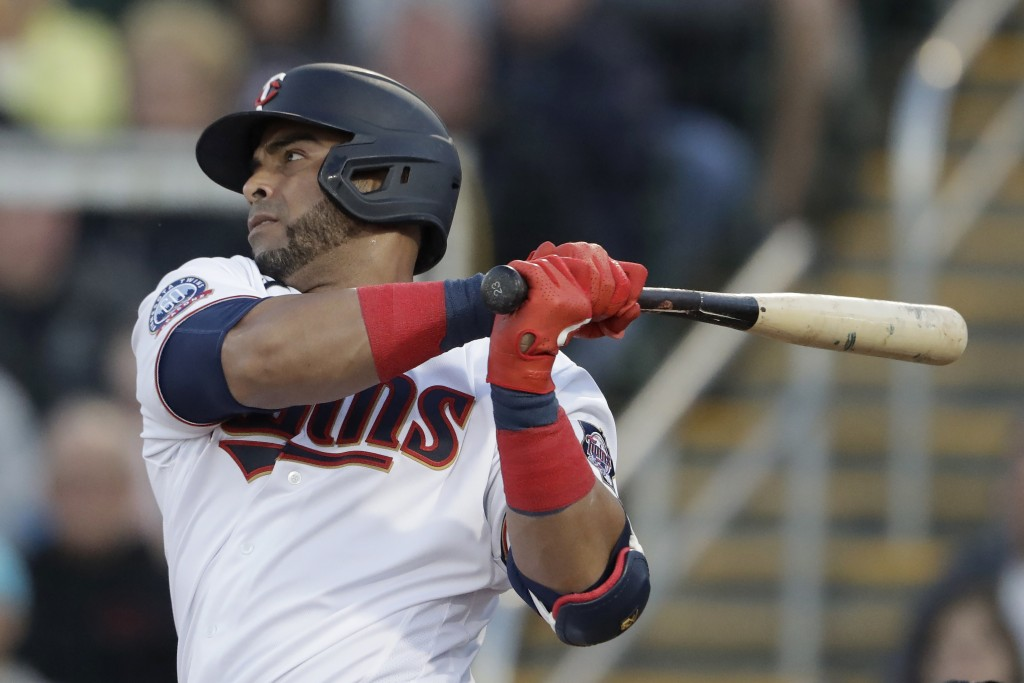 FILE - Minnesota Twins designated hitter Nelson Cruz (23) follows through on a single in the first inning of a spring training baseball game against t...