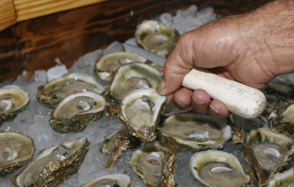 FILE - In this Aug. 13, 2013, file photo, oysters are displayed in Apalachicola, Fla. Because of a dwindling oyster population, a Florida agency is ex...