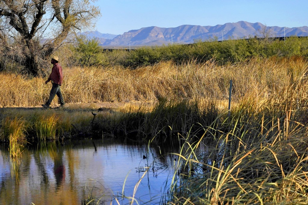 Myles Traphagen, Borderlands Program Coordinator for Wildlands Network, walks through a marsh area as the top of a newly erected border wall cuts thro...