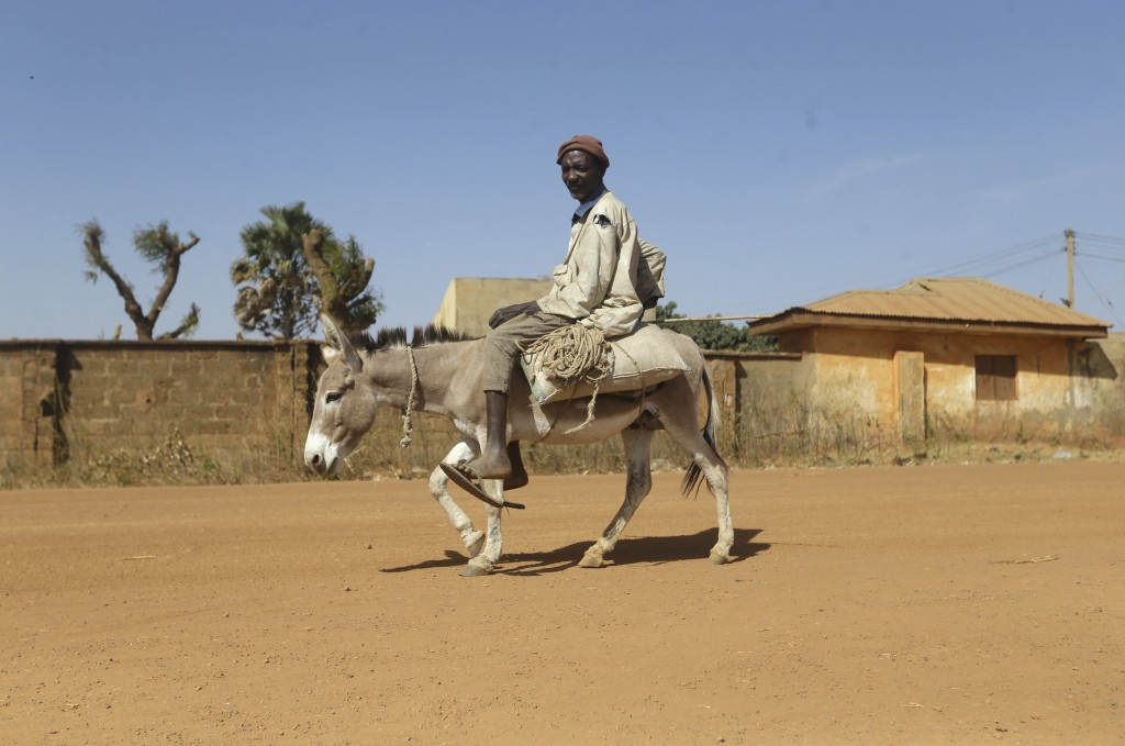 A man on a donkey moves past Government Science Secondary School where school children were kidnapped in Kankara, Nigeria, Wednesday, Dec. 16, 2020. R...