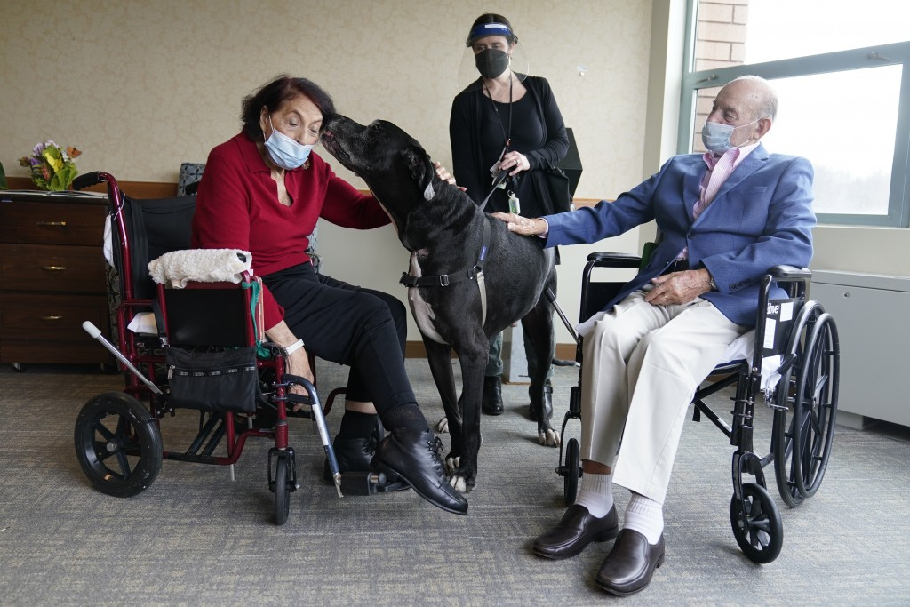Sal Markowitz, 96, right, and Sandra Greer, 82, left, visits with Marley, a Great Dane, while therapeutic activities director Catherine Farrell looks ...