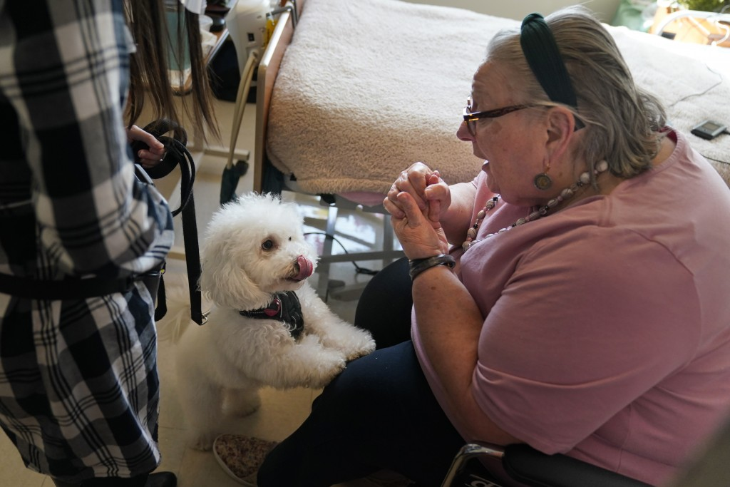 Eileen Nagle, 79, talks with Zeus, a bichon frise, as he visits her room at The Hebrew Home at Riverdale in New York, Wednesday, Dec. 9, 2020. New dog...