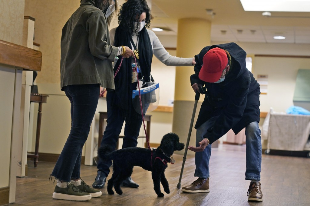 Kelley Dixon, right, greets Redwood, a poodle, as he trains while making the rounds at The Hebrew Home at Riverdale in New York, Wednesday, Dec. 9, 20...