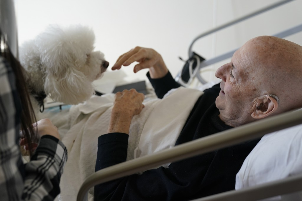 Jeff Philipson, 80, right, smiles as he visits with Zeus, a bichon frise, at The Hebrew Home at Riverdale in New York, Wednesday, Dec. 9, 2020. New do...