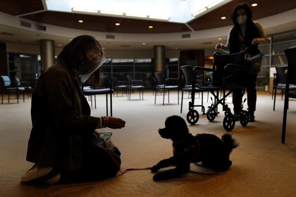 Owner Joy Solomon, left, and therapeutic activities staff member Olivia Cohen work with Redwood, a poodle, to accustom him to common nursing home sigh...