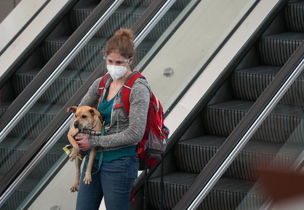 A traveller wears a face mask and a shield while carrying her dog on an escalator near the south security checkpoint in Denver International Airport T...