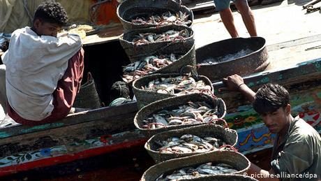 Pakistan: China's 'involvement' in deep sea fishing angers local fishermen