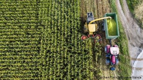 Opinion: EU fails to introduce real agricultural reform