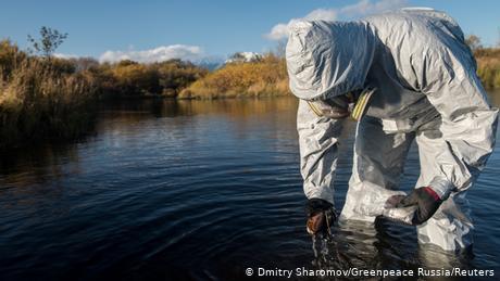 Russia: Toxic algae blamed for death of marine life