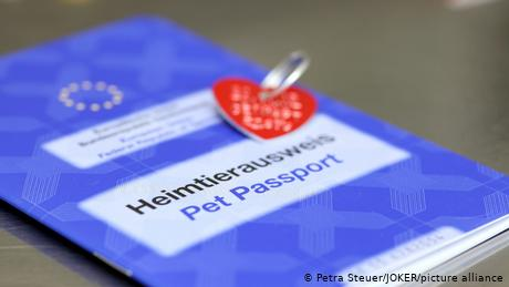 British pets to lose EU passports post-Brexit