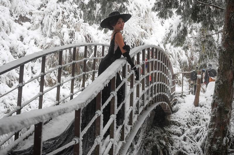 太平山國家森林遊樂區7日晚間起因寒流下雪,吸引不少遊客來訪,有民眾8日特地到見晴古道拍下美照。中央社