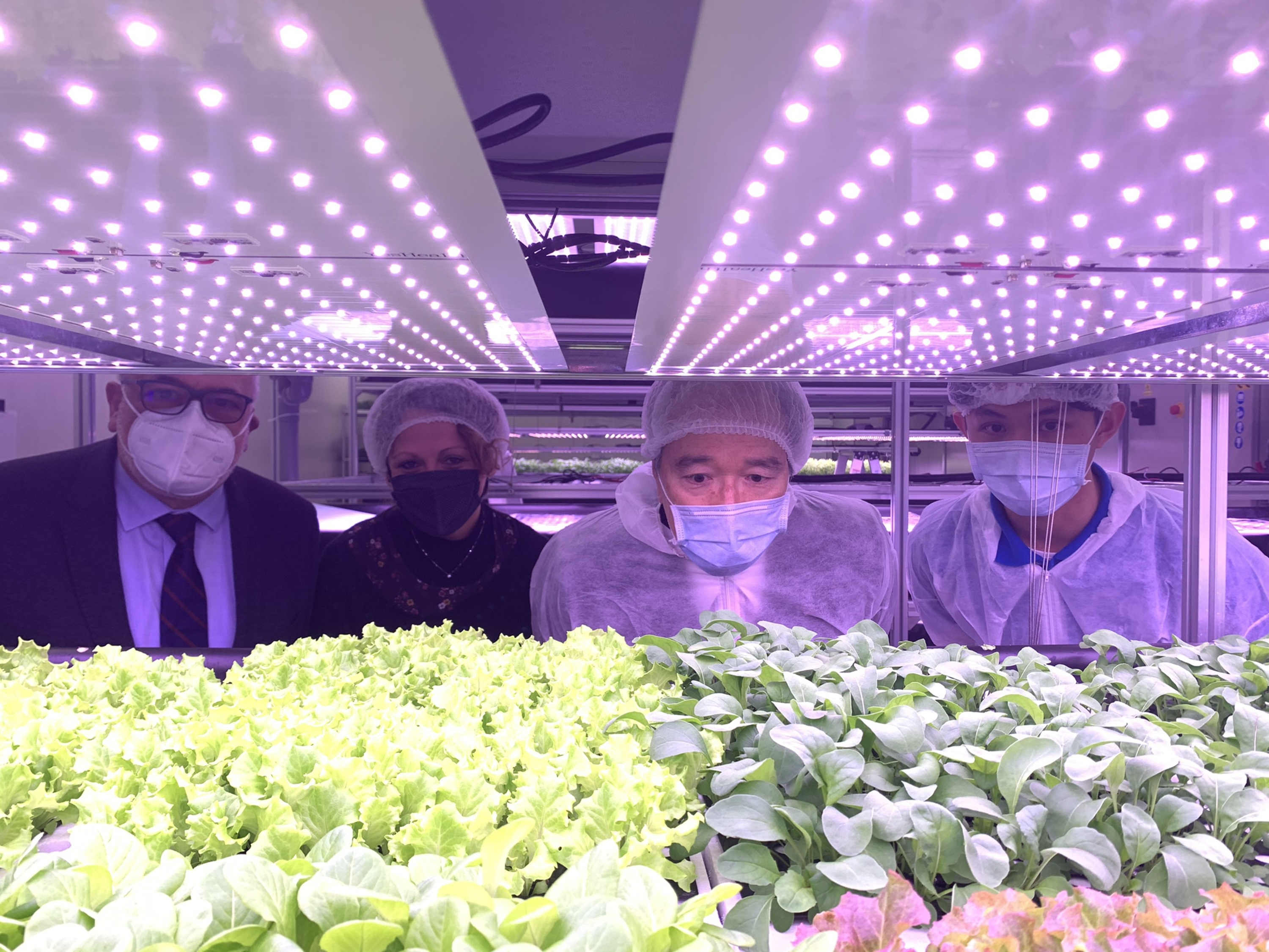 Taiwanese diplomats and Vatican officials toured a joint smart farm Friday
