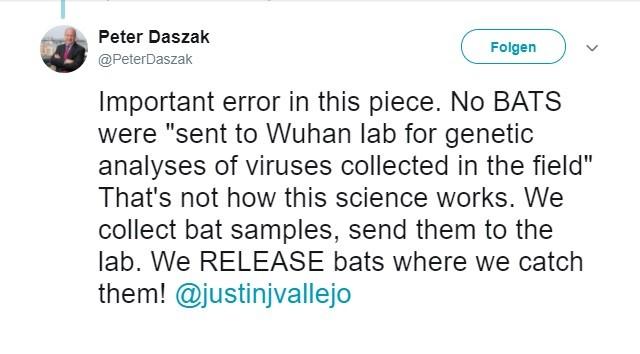 Video indicates bats kept at Wuhan lab before COVID pandemic