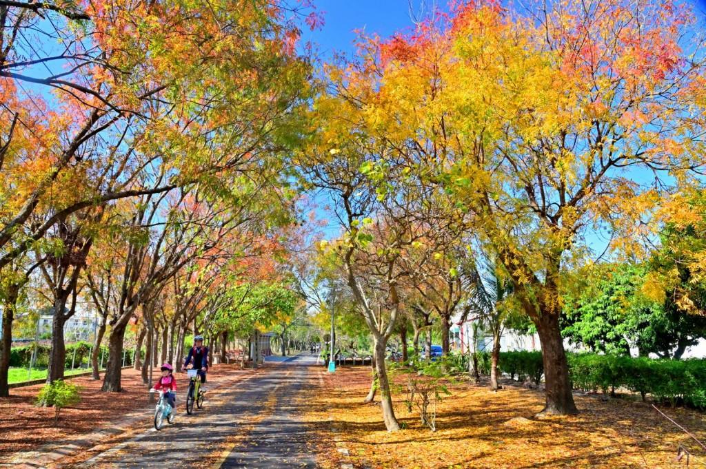 【春遊台中輕旅行】騎自行車暢遊東勢客家山城 登高谷關七雄兼泡湯