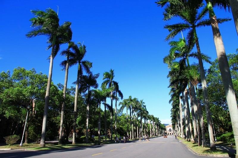 National Taiwan University campus (Facebook, NTU photo)