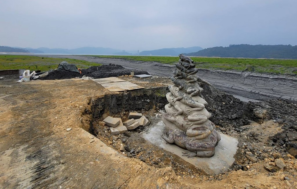 Sun Moon Lake's nine frogs sitting on dry land