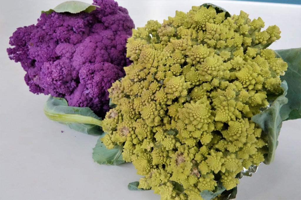 春天囡仔面  呷有機蔬菜尚健康