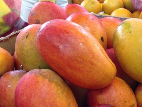 Taiwanese mangoes could soon face competition from China in the Japanese market