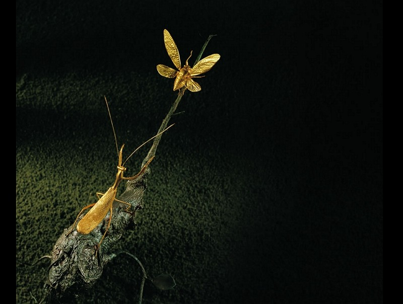 """Mantis Capturing Cicada"" by Wu Ching (Bowers Museum photo)"