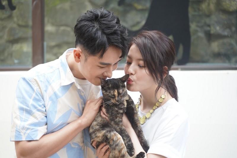 Cat Public Office to promote feline welfare in Taiwan's Houtong village