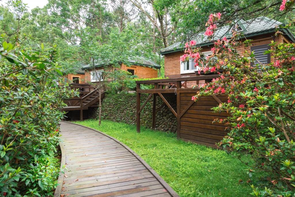 守護山林  森林保育處於棲蘭森林遊樂區進行植樹活動