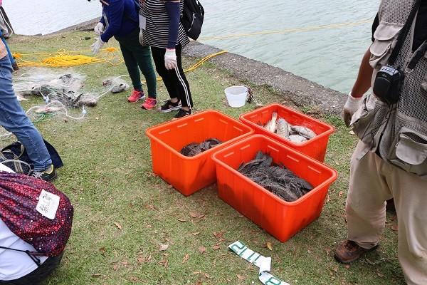 Invasive catfish removed from Taipei's Neihu District