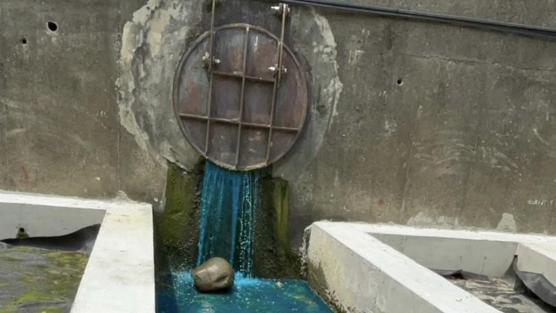 照片來源:新北市政府環保局提供