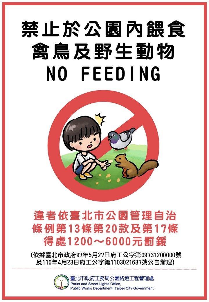 別亂餵野生動物了!6/1起台北市公園內餵食鴿子、松鼠、魚 最高可罰6000元