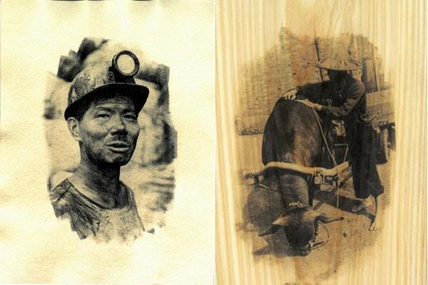 圖片由農委會林試所提供,Taiwan News後製