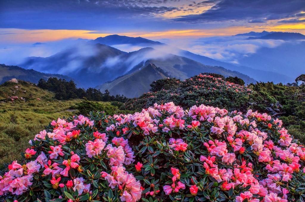 深度介紹台灣慢城景點 觀光局攜手韓籍山岳名人嚴弘吉韓國實境節目