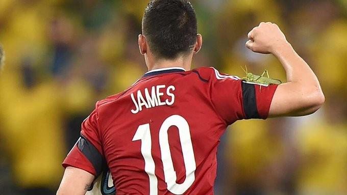 """2014年世界杯上,一隻巨大昆蟲停在哥倫比亞隊球星羅德里奎茲手臂上(圖/翻攝自<a href=""""https://twitter.com/e..."""