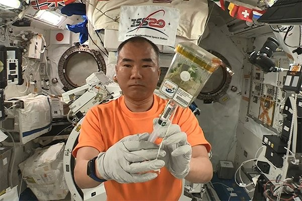 台灣種子「太空旅行」200天重返地球 中興大學即日起至8/15•徵選校園栽種者