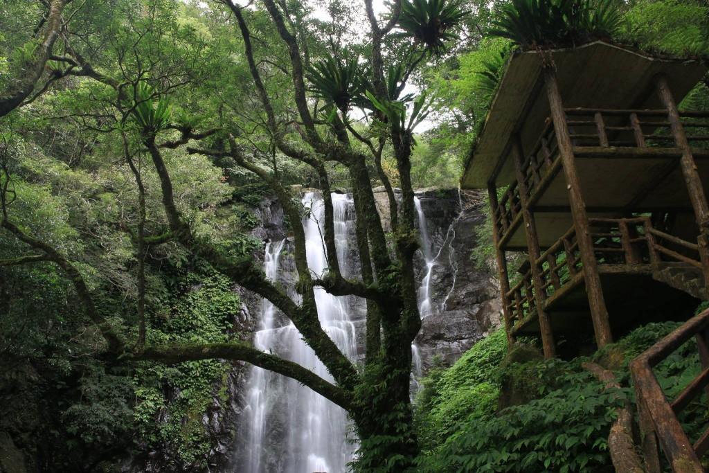 照片來源:新竹林管處提供