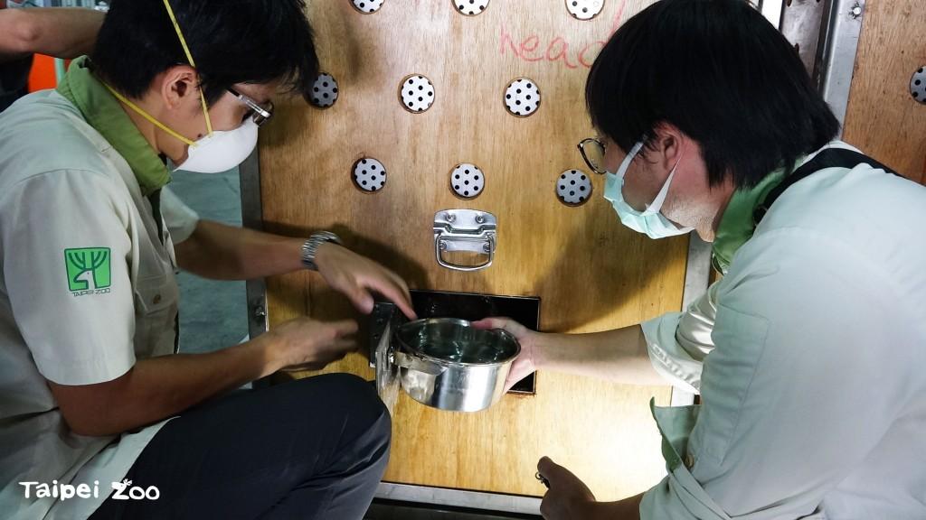 野生動物保育合作無國界 臺北侏儒河馬赴美國動物園