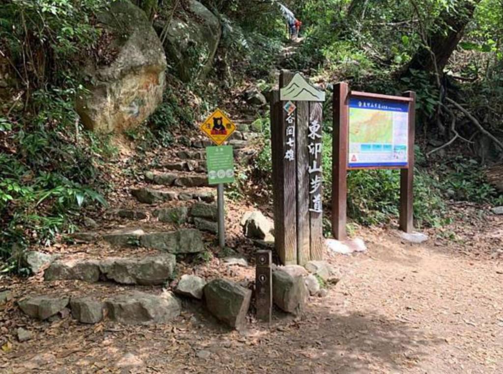 【熊出沒•請當心】台灣山友登台中谷關德芙蘭步道•聽見熊吼聲急折返 林管處:遇到熊勿大叫奔跑