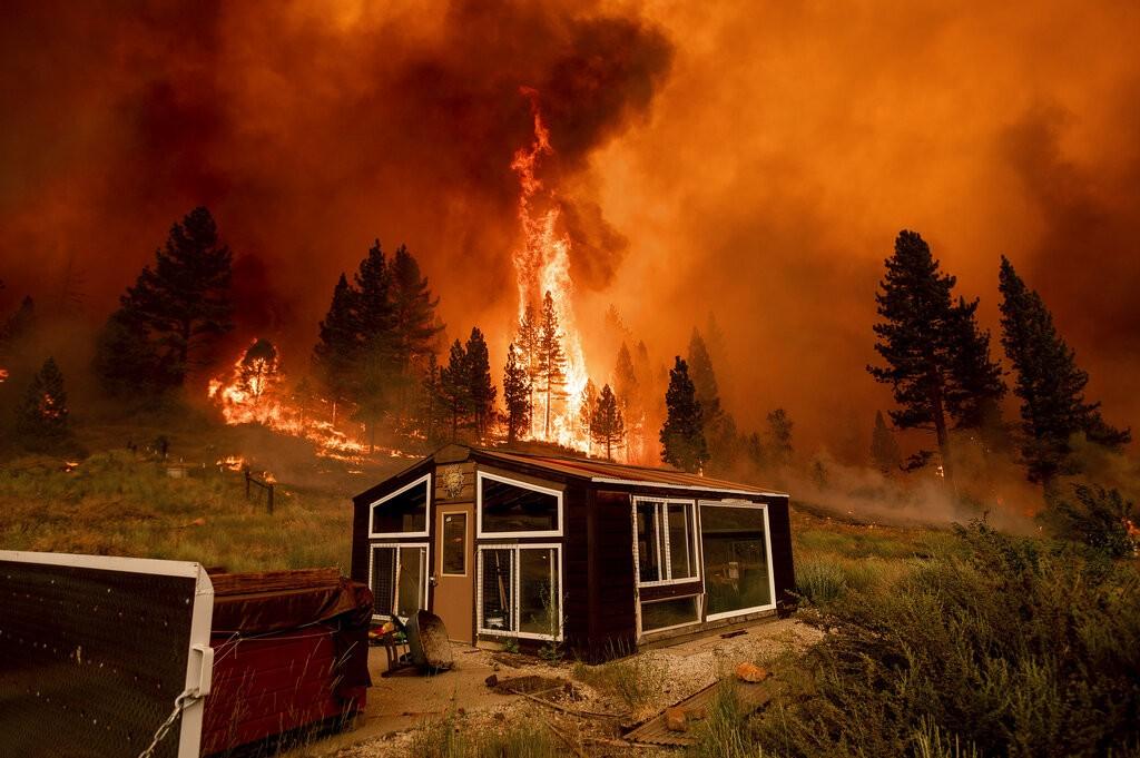 美國加州野火(圖/AP)