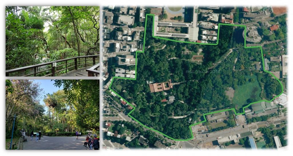 林試所對台北新北兩座公園空品監測 都市公園PM2.5淨化功能具正面效益