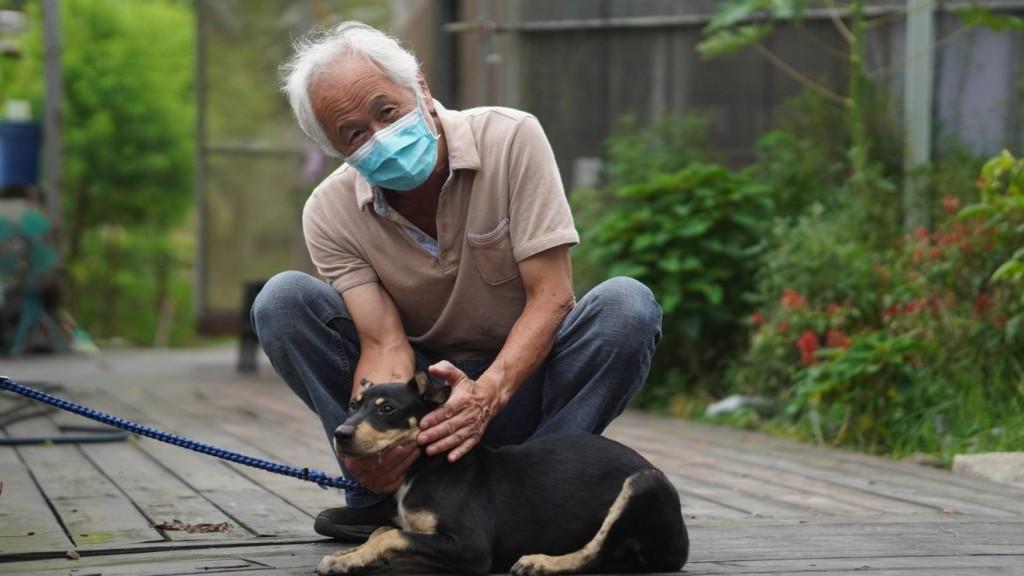 金牌農村推動認養農場守護犬