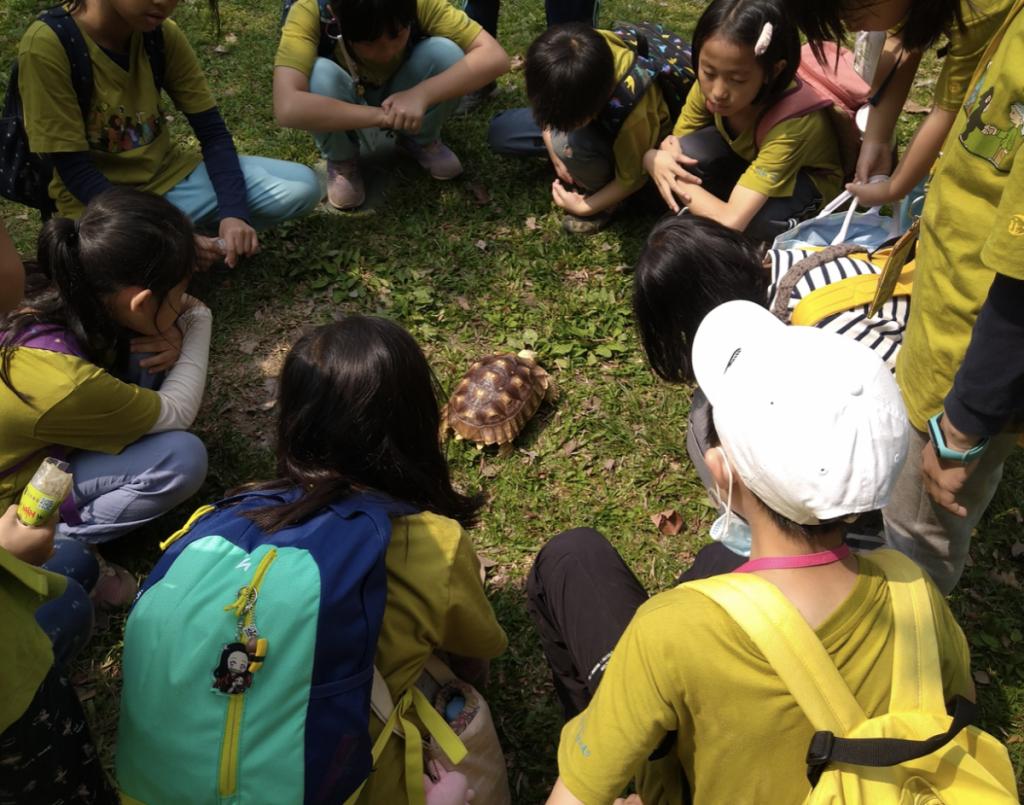 專注保育和永續議題 亞洲首間「珍古德小學」將在台灣開辦