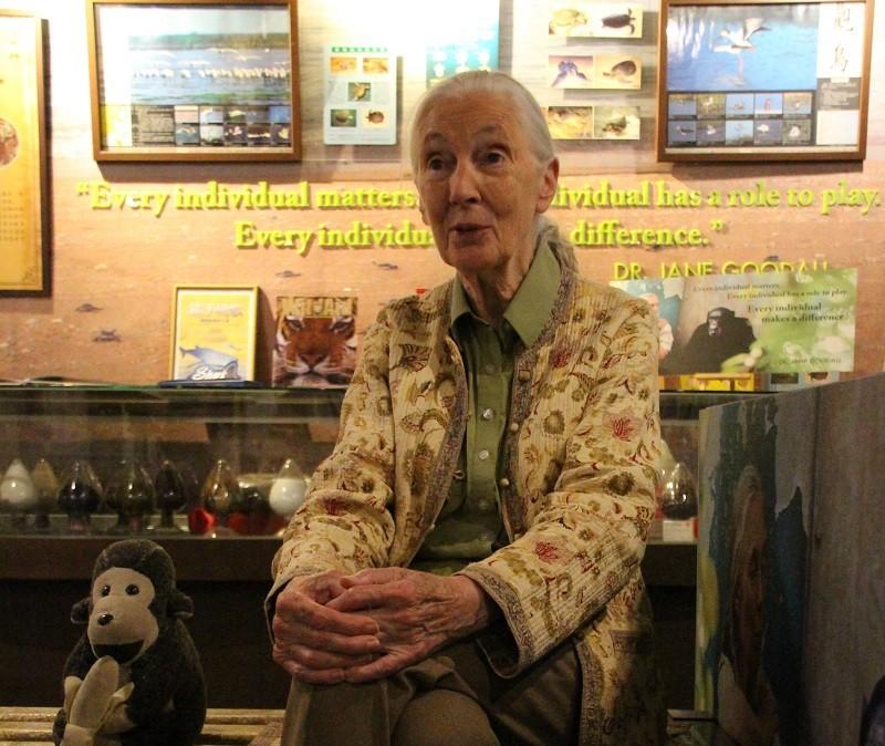 珍古德(Dr. Jane Goodall)