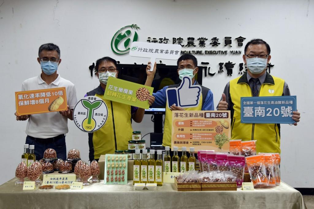 台灣落花生新品種   高油酸台南20號可望提升國際市場競爭力