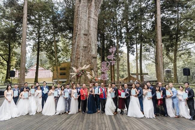台灣最高海拔森林系婚禮  2021阿里山神木下婚禮