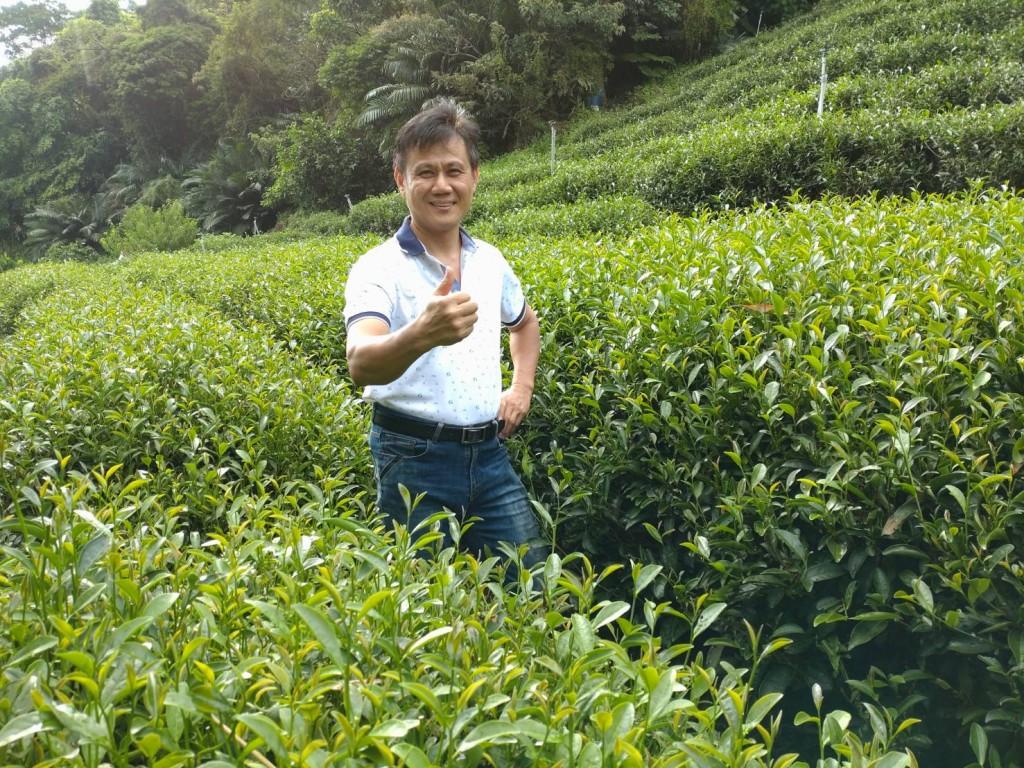 尋蜜堅持的味道 新北蜜香紅茶上市