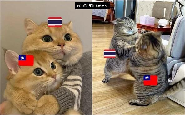Milk Tea Alliance, and Popcat battle. (Twitter, Peppermint Soda image)