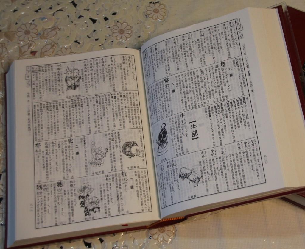 台華雙語辭典內容。(照片由Taiwan News拍攝)
