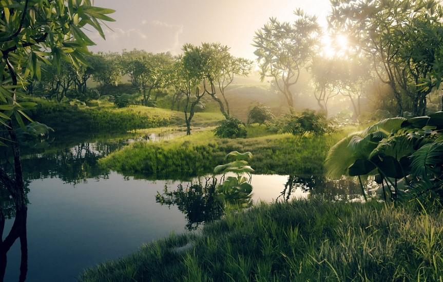 雨林(圖/Getty Images)