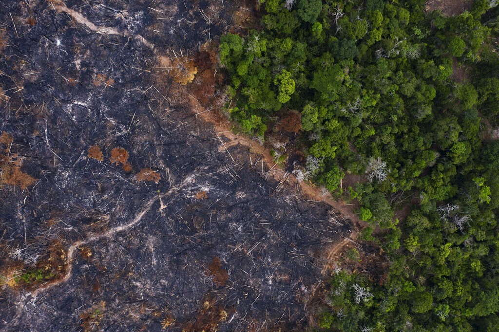In this Nov. 23, 2019 file photo, a burned area of the Amazon rainforest is seen in Prainha, Para state, Brazil.