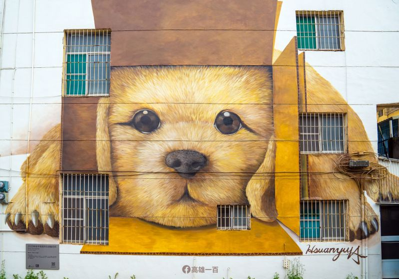 Photo of the Day: Puppy peers out from south Taiwan abode