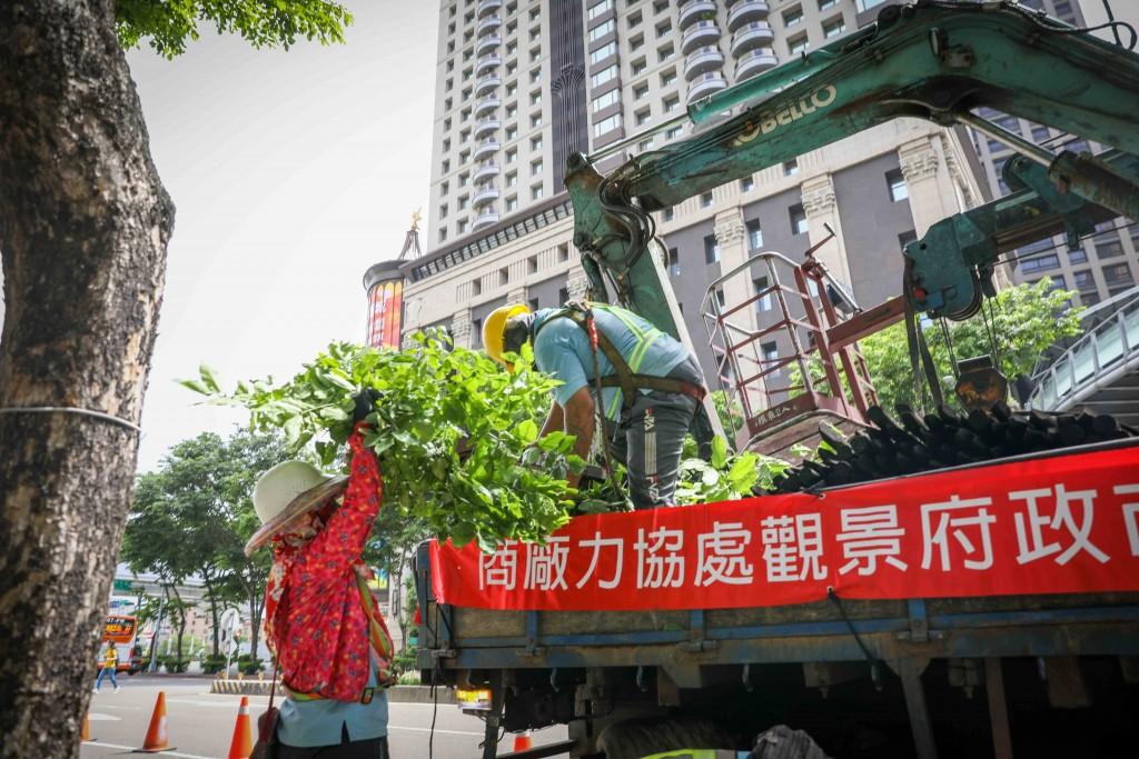 颱風「璨樹」逼近 農業局從山到海全方位防災