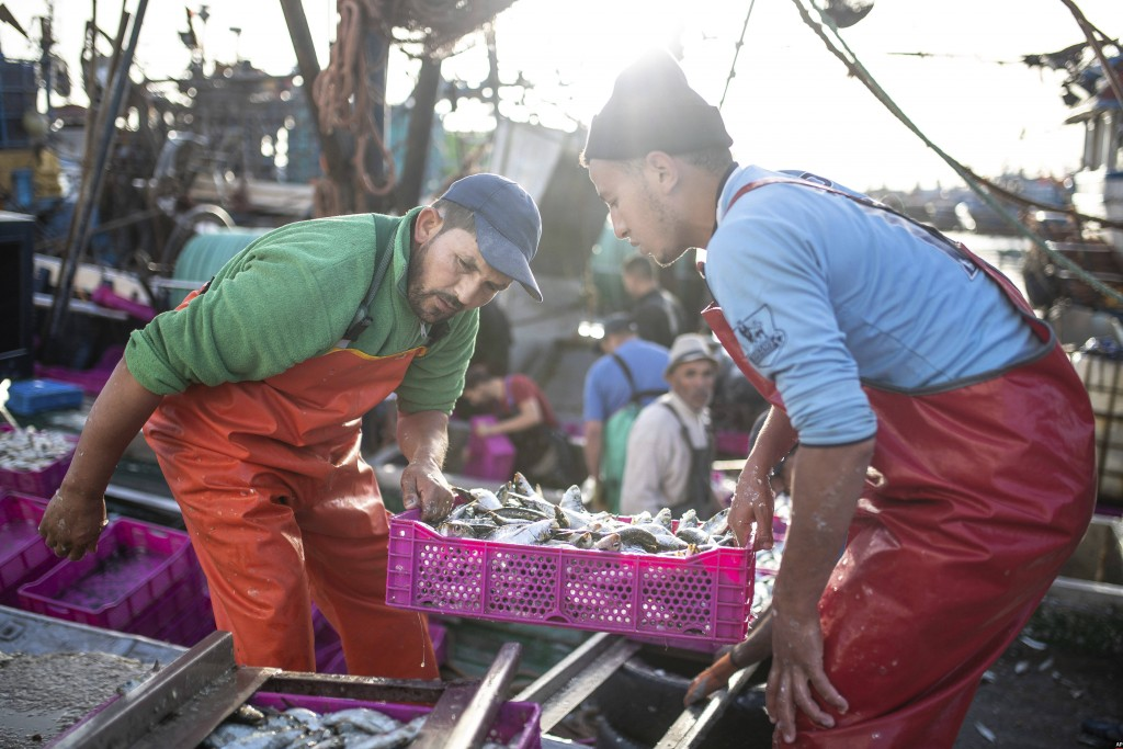 Fishermen transport their catch after docking in the main port in Dakhla city, Western Sahara, Monday, Dec. 21, 2020. U.S. plans to open a consulate i...